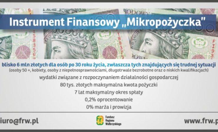 Mikropożyczka – nowe możliwości na rozpoczęcie działalności gospodarczej