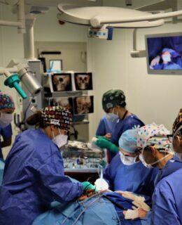 salioperacyjnazpierwszegozabiegu, Specjalistyczne Centrum Medyczne Medicus Clinic