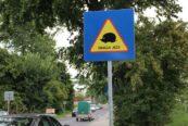 """znaki drogowe """"uwaga jeże"""" ustawione na ulicach Lublina fot. miasto Lublin"""