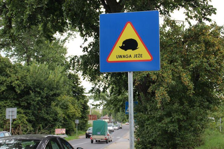 """znaki drogowe """"uwaga jeże"""" ustawione na ulicach Lublina"""